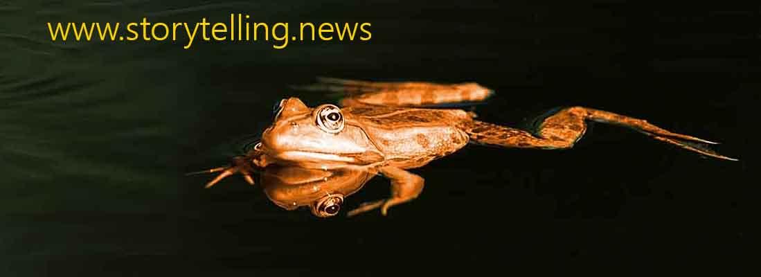 storytelling.news